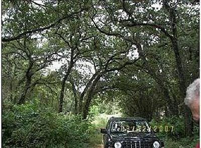 Tarrant County Residential Lots & Land For Sale: 5248 Newt Patterson Road