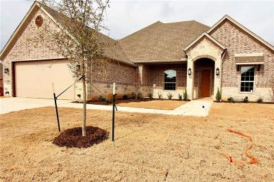 Granbury Single Family Home For Sale: 2041 Clive Drive