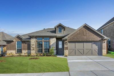 Fort Worth Single Family Home For Sale: 9305 Horsemanship Drive