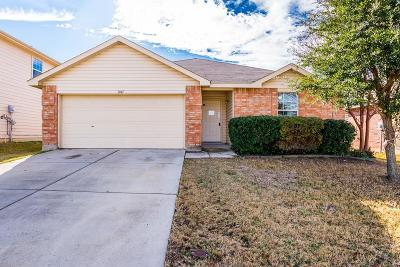 Single Family Home For Sale: 1041 Fort Apache Drive