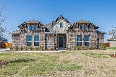 Waxahachie Single Family Home For Sale: 313 Equestrian Drive