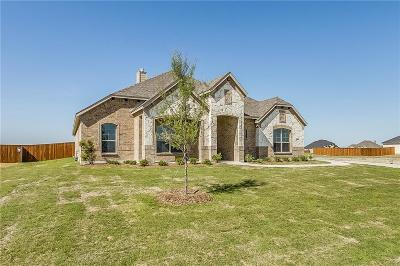 Waxahachie Single Family Home For Sale: 317 Equestrian Drive