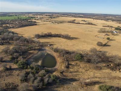 Lipan Farm & Ranch For Sale: 401 S Caddo Street