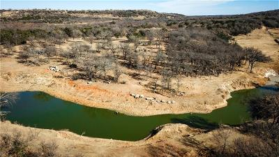 Santo Farm & Ranch For Sale: 13273 S Highway 281