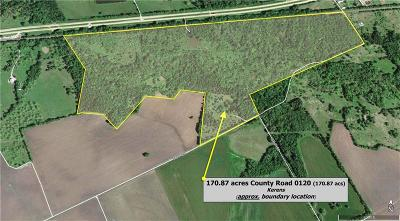 Farm & Ranch For Sale: 170.87 SE County Road 0120