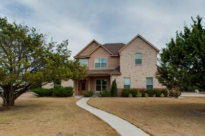 Weatherford Single Family Home For Sale: 480 Dillingham Lane