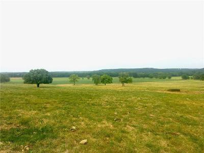 Erath County Farm & Ranch For Sale: 257 Private Road 871
