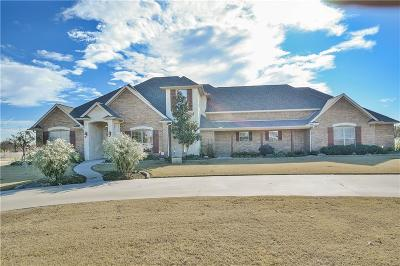 Weatherford Single Family Home For Sale: 165 Pack Saddle Trail