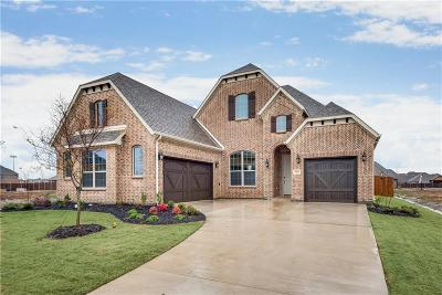 Prosper Single Family Home For Sale: 931 Waterview Drive