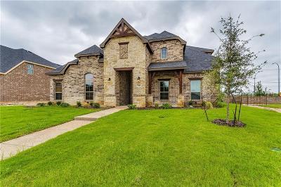 Arlington Single Family Home For Sale: 7300 Vicari Drive