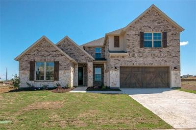 Frisco Single Family Home For Sale: 14268 Winecup Drive