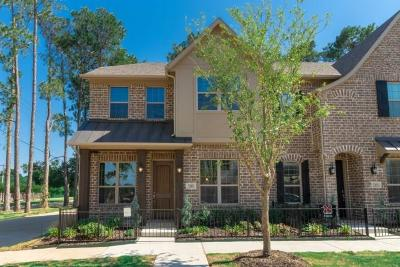 Flower Mound Townhouse For Sale: 2205 Zenith Avenue