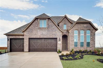 Prosper Single Family Home For Sale: 960 Waterview Drive