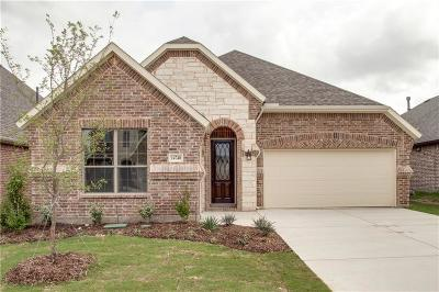 Dallas, Fort Worth Single Family Home For Sale: 14740 Cedar Flat Way