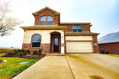 Irving Single Family Home For Sale: 3951 Yogi Way