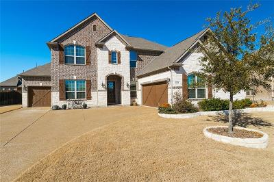 Rowlett Single Family Home For Sale: 9906 Clubhouse Circle