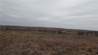 Weatherford Farm & Ranch For Sale: 166 John Chisholm Road