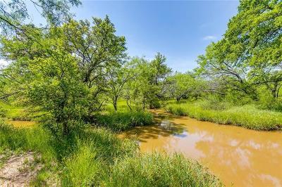 Jacksboro Farm & Ranch For Sale: Tbd-17 Hwy 148