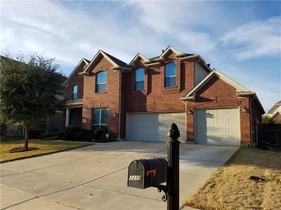 Grand Prairie Single Family Home For Sale: 3220 Paseo