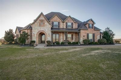 Wills Point Single Family Home Active Contingent: 1299 Shadow Lakes Drive