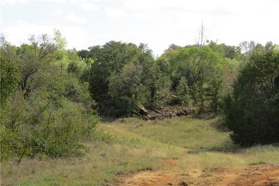 Santo Farm & Ranch Active Option Contract: Tbd Ih 20 Road