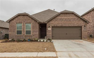 Aubrey Single Family Home For Sale: 1728 Ranch Trail
