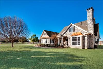 Little Elm Farm & Ranch For Sale: 706 Amber Lane