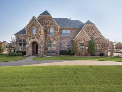 Flower Mound Single Family Home For Sale: 2204 Lake Lugano Drive
