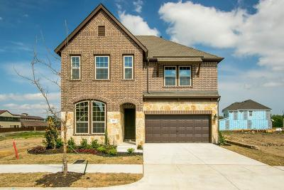 Irving Single Family Home For Sale: 560 Paddock Way