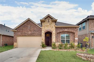 Frisco Single Family Home For Sale: 4001 Ellenboro Street