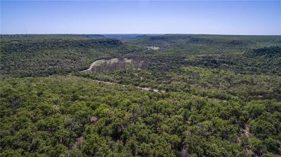 Palo Pinto Farm & Ranch For Sale: 427 N Lakeview Drive