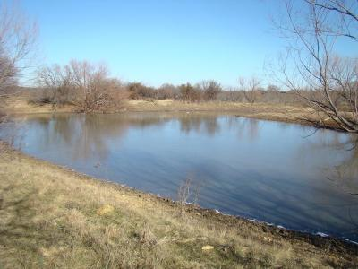 Carbon Farm & Ranch For Sale: Tbd County Road 375