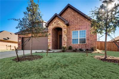 Arlington Single Family Home For Sale: 5116 Santa Rosa Drive