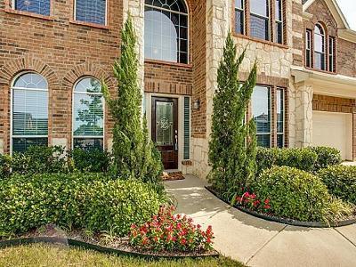 Arlington Single Family Home For Sale: 1902 Santa Anna