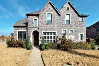 Irving Single Family Home For Sale: 7220 Comal Drive