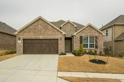 Lewisville Single Family Home For Sale: 214 Copper Canyon Drive