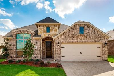 Fort Worth Single Family Home For Sale: 3060 Bella Lago Drive