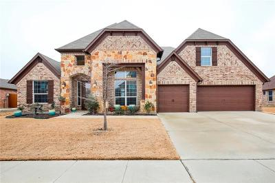 Little Elm Single Family Home For Sale: 2216 Gulfstream Drive