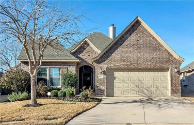 Fort Worth Single Family Home For Sale: 9829 Brazoria Trail
