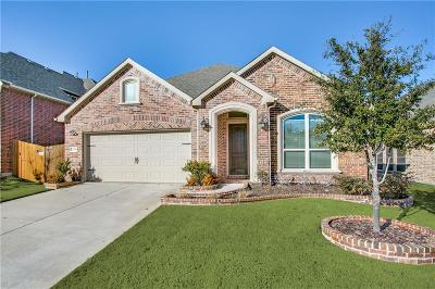 McKinney Single Family Home Active Option Contract: 10868 Leesa Drive