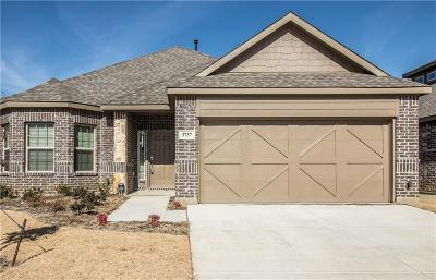 Fort Worth Single Family Home For Sale: 3737 Holly Brook Drive