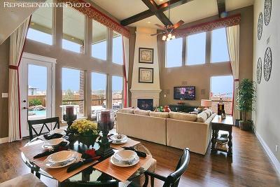 Frisco Single Family Home For Sale: 10575 Railswood Drive