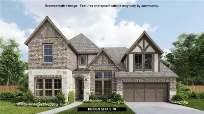 Frisco Single Family Home For Sale: 16248 Moonseed Road