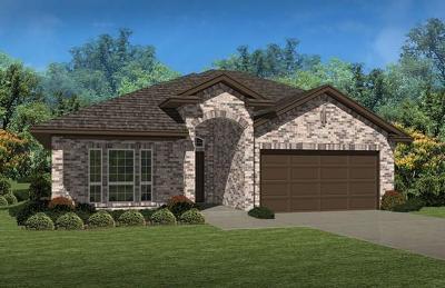 Fort Worth Single Family Home For Sale: 2316 Sundown Mesa Drive