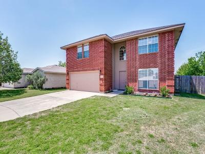 Fort Worth Single Family Home For Sale: 2700 Briscoe Drive