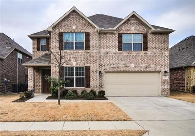 Little Elm Single Family Home For Sale: 524 Sundrop Drive