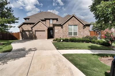 Frisco Single Family Home For Sale: 8394 Flintrock Drive