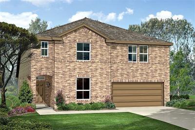 Denton Single Family Home For Sale: 308 Sky Meadow Lane