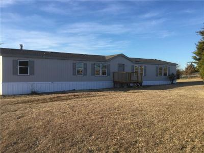 Weatherford Single Family Home For Sale: 132 Bluff Heights Drive