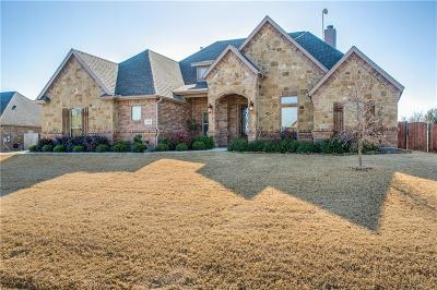 Fort Worth Single Family Home For Sale: 1301 Bluff Springs Drive